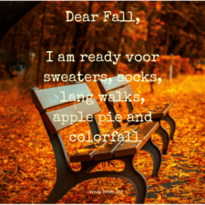 falli-am-ready-voor-sweaters-socks-lang-walks-apple-pie-and-colorfall